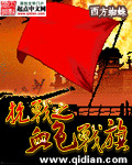 抗战之血色战旗封面
